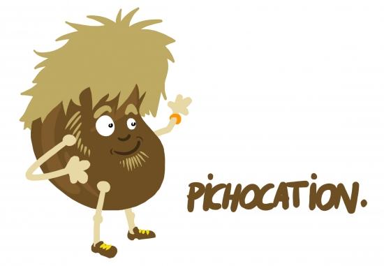 Pichocation.jpg